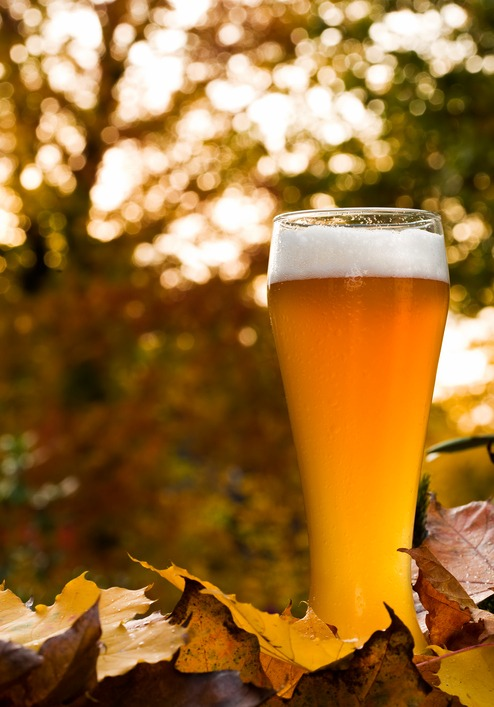 Fall Craft Beers And Seasonal Cocktails American Social